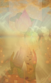 H_12-Lotus Flowers300DPI.jpg