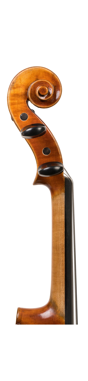 SV250 neck.jpg