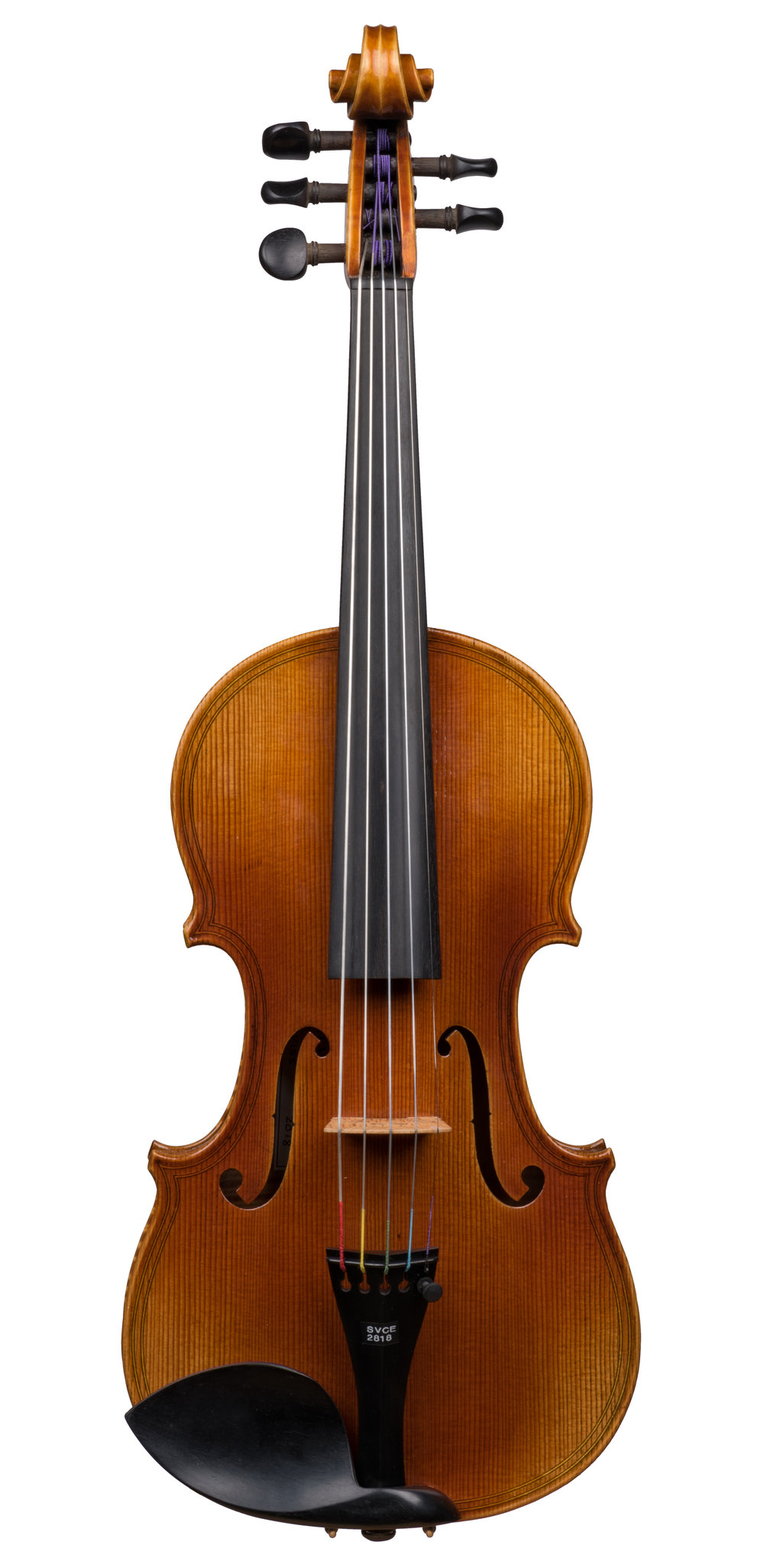 Seman Violins SV155,5-String -