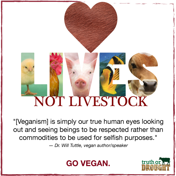 Lives-not-livestock.jpg