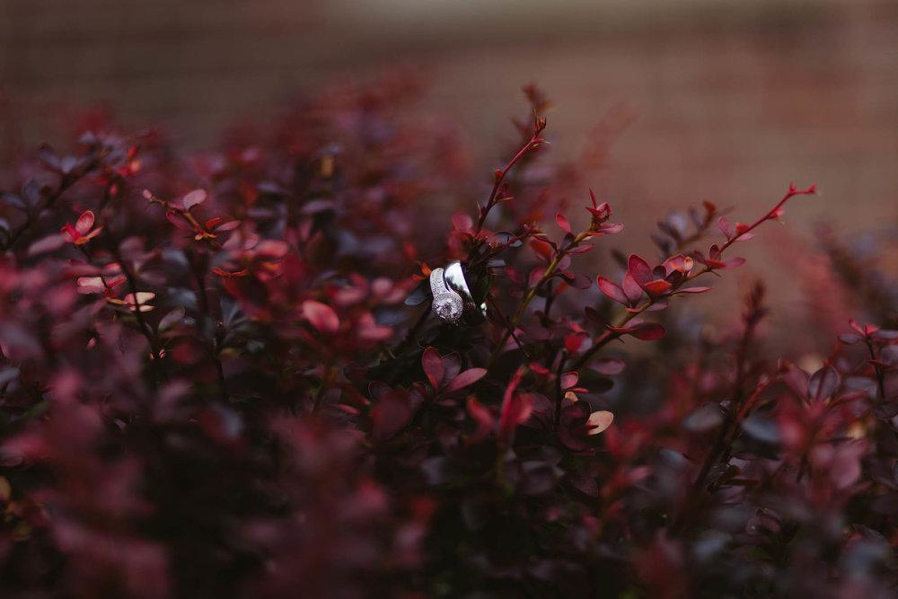 AutumnPat-73.jpg