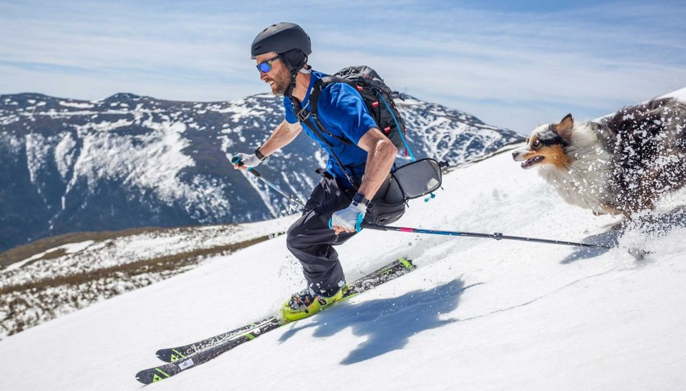 skiier-and-dog_h.jpg