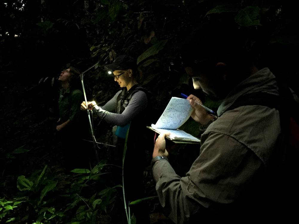 Data collection in the Amazon