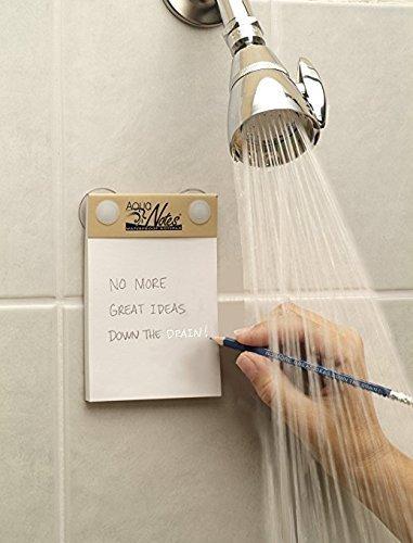 Aqua Notes.jpg