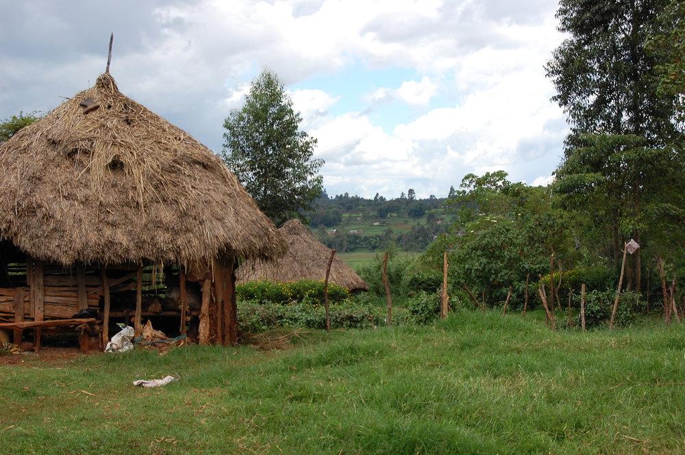 9 Rural Living.JPG