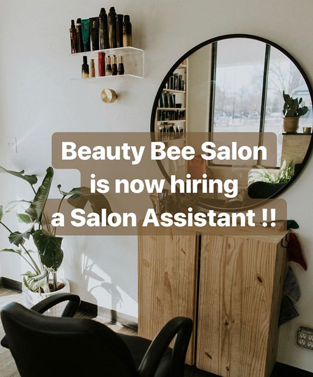 There are lots of new and exciting things happening in the world of @beautybeesalon. • We are busy little bees to say the least - it's the perfect time for the addition of an assistant! We are looking for someone who is motivated, easy going, licensed and READY TO LEARN. • If you, or someone you know, may be interested in working with an established and fun team of stylists, drop a comment, DM or email beautybeesaloninfo@gmail.com 🐝 💗