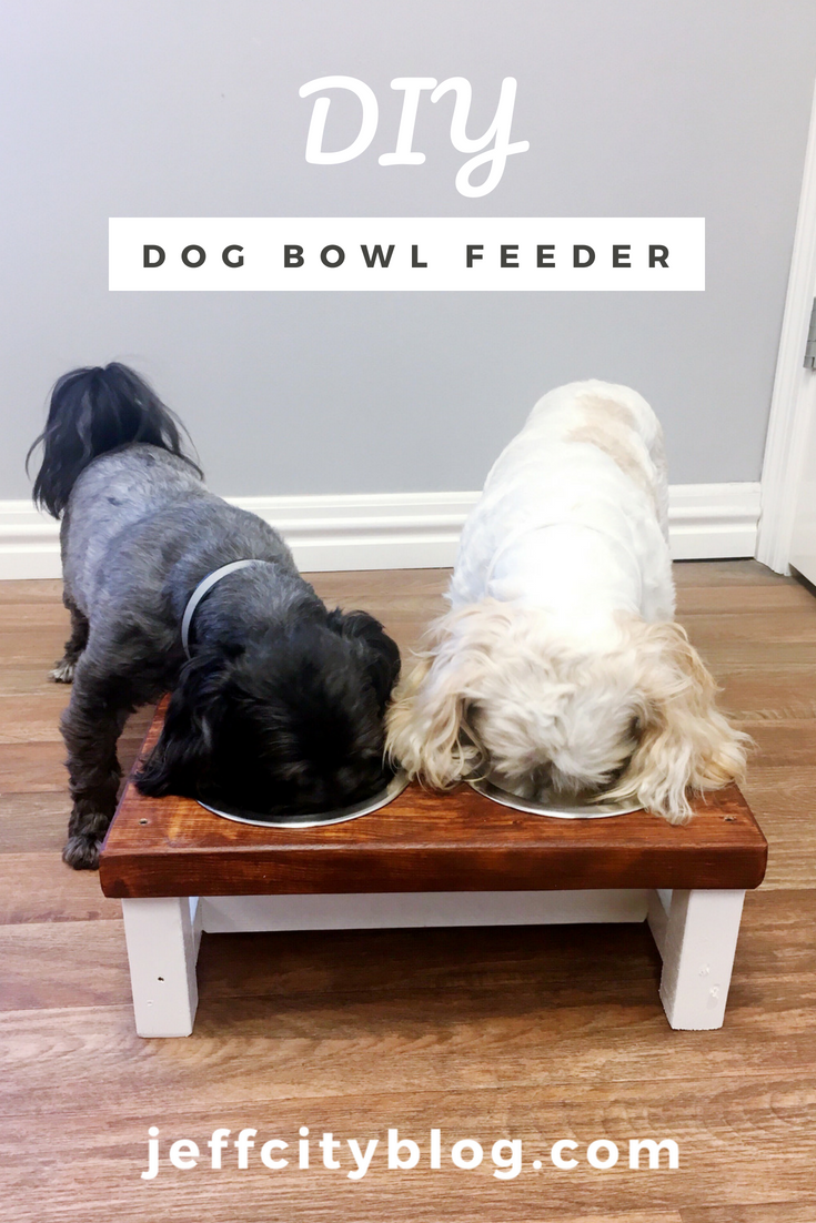 DIY-Dog-Bowl-Feeder-jefferson-city-blog-scruggs-lumber-jefferson-city-mo