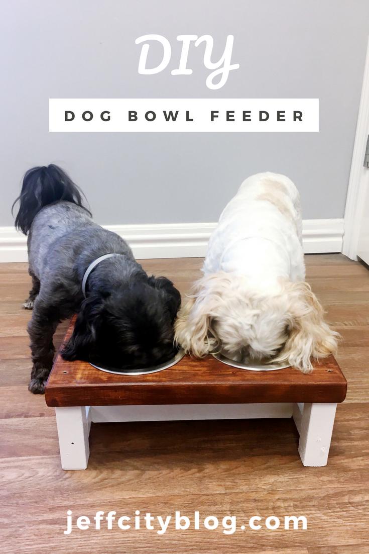 DIY-Dog-Bowl-Feeder-jefferson-city-blog-scruggs-lumber-jefferson-city-mo
