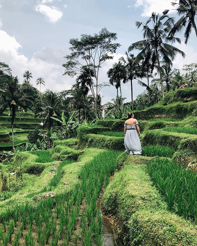 headed to 5 million places in ubud and are still trying to pinch ourselves that this place is real✨
