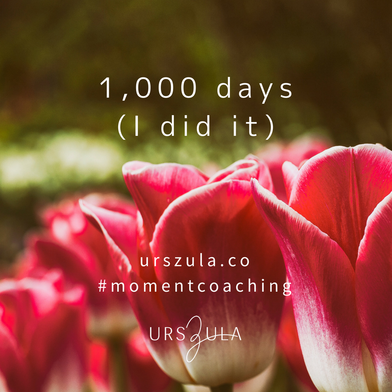 What I learned from 1,000 days of meditation - Urszula Lipsztajn
