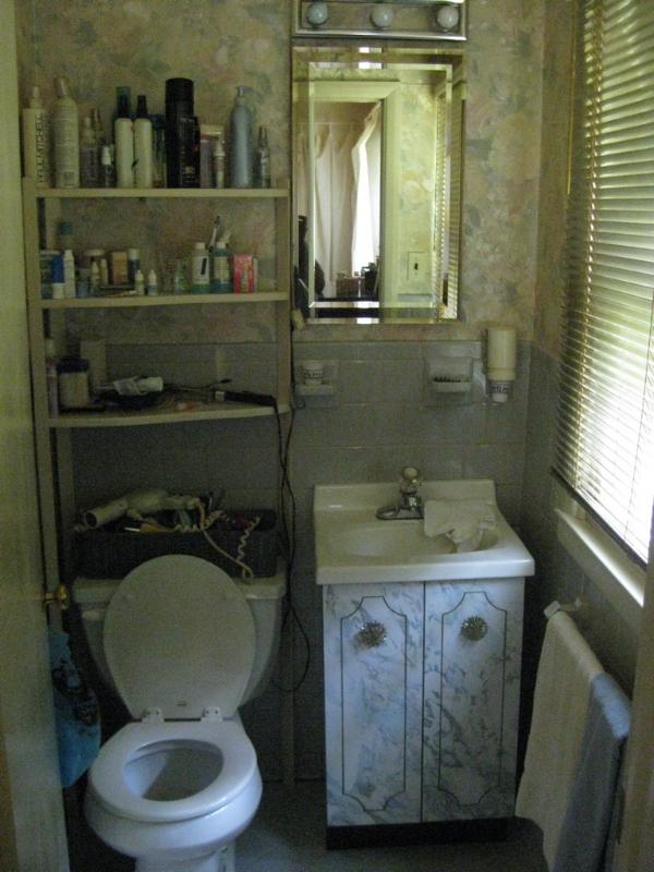 TV Show Pilot Cast Crew Home Design Master Bath Bathroom Renovation Remodel Interior Design Contractor Realtor Decor Inspiration
