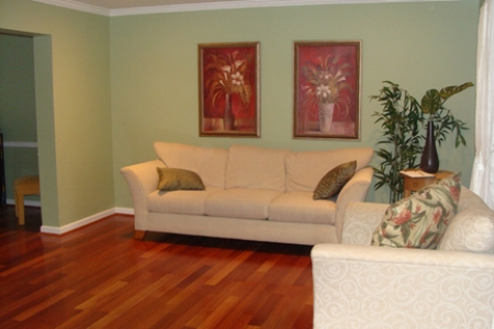 {Jensen living room before.}