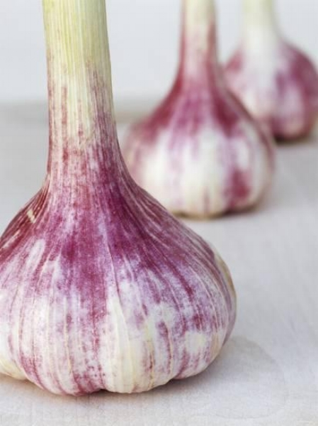 {A close up of garlic bulbs is a natural and beautiful addition to any kitchen.  Three Fresh Garlic Bulbs  by  Linda Burgess .}