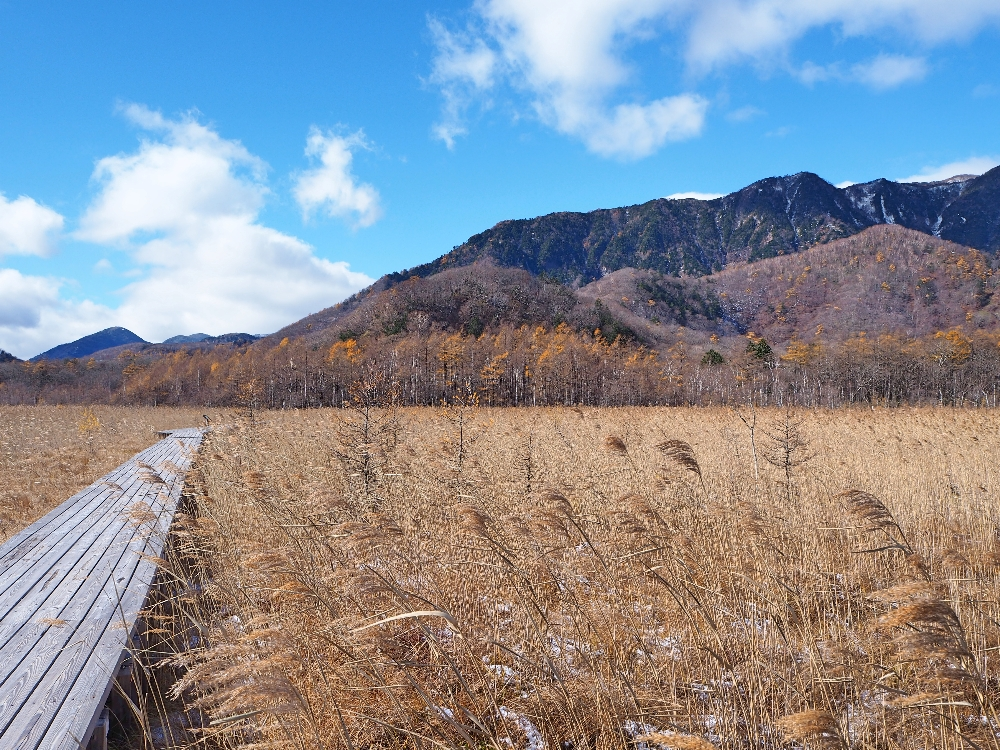 The best day, hiking in the mountains of Nikko.