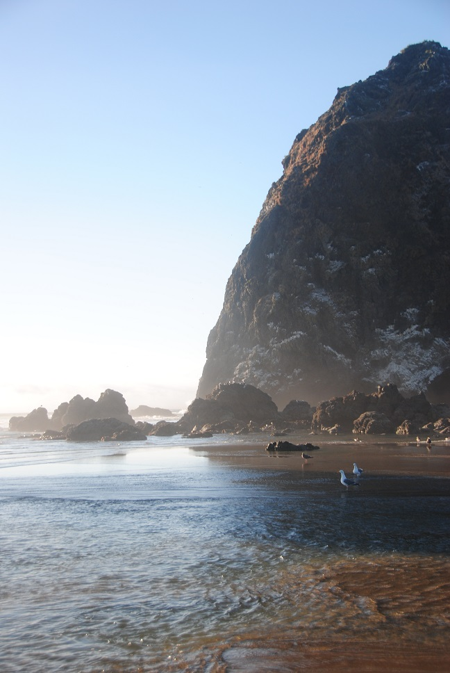 CannonBeach2-small.jpg