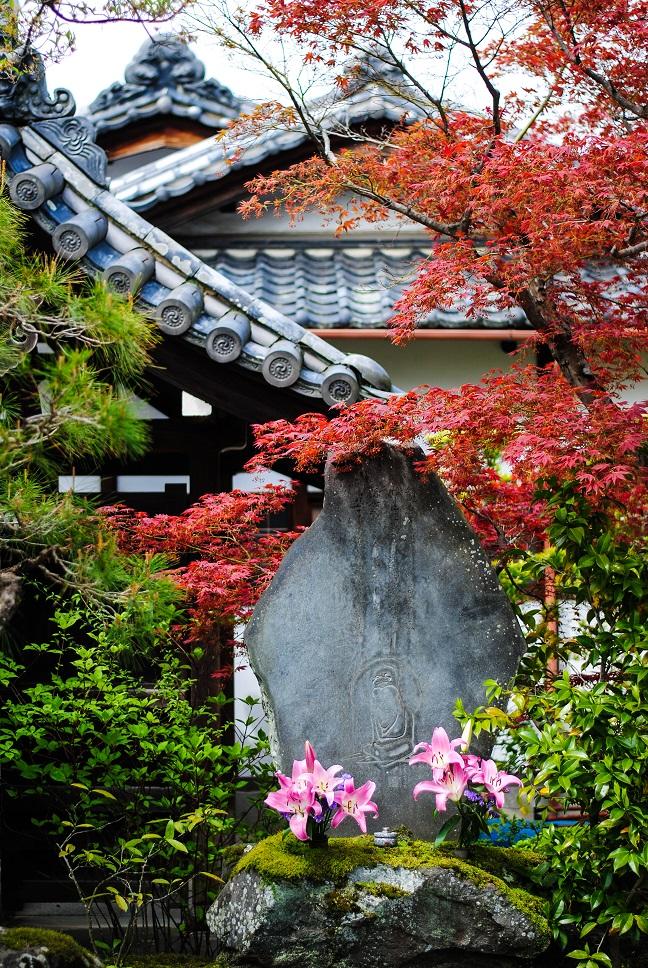 Japan-Small.jpg