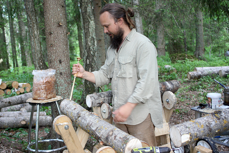 Injecting a mixture of mycelium and sawdust into holes in the logs