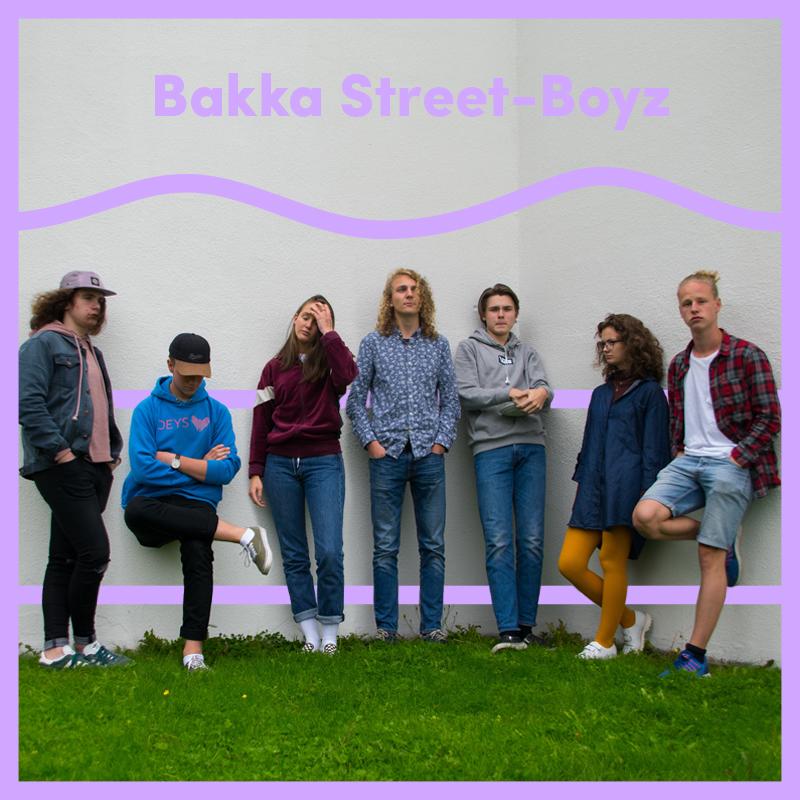 Bakka_artistskin.jpg