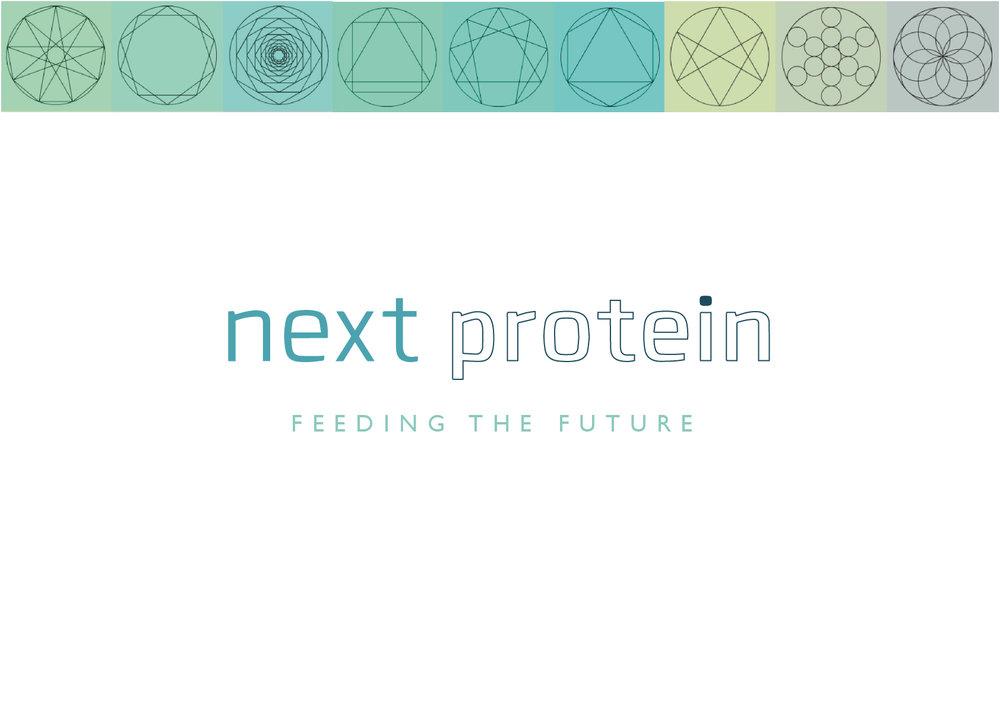 NextProtein_concept4_02.jpg