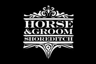 horse groom .jpg