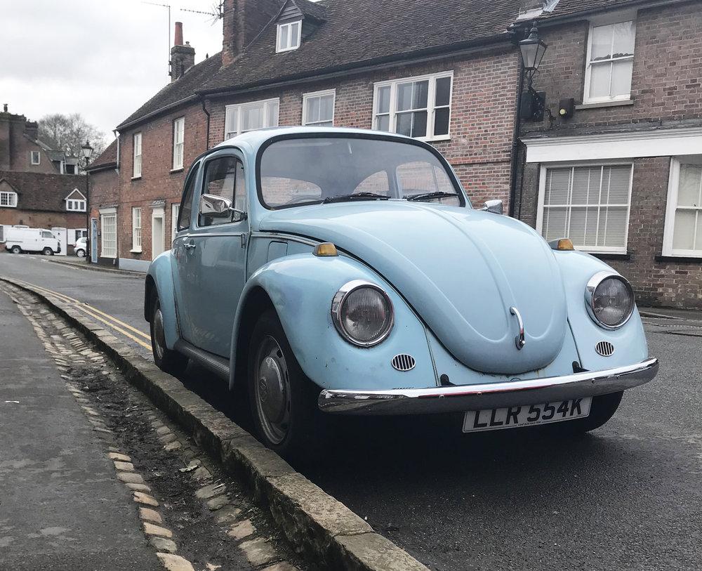 beetle3.jpg