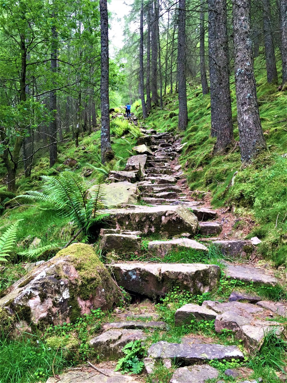 Buttermere steps - - The Rural Travel Guide