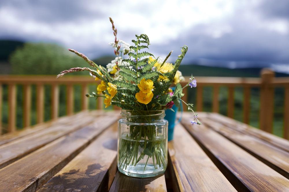 Enjoy the local flora and fauna - - Wigwam Holidays
