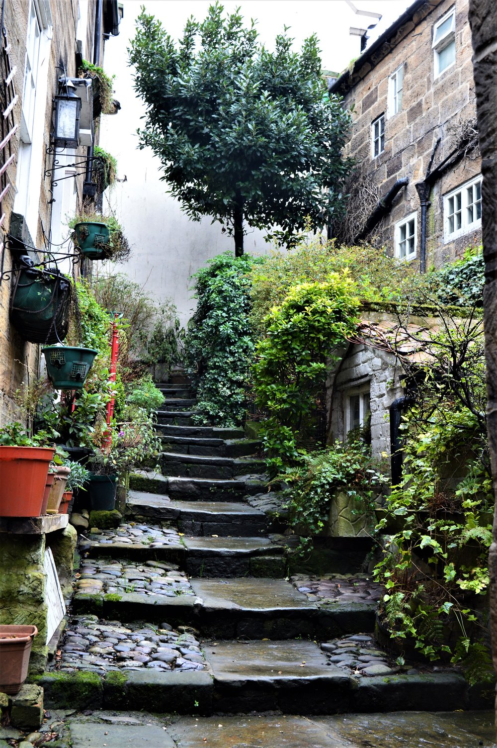 Robin Hood's Bay - - The Rural Travel Guide
