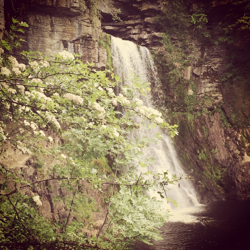 Ingleton Falls - - The Rural Travel Guide