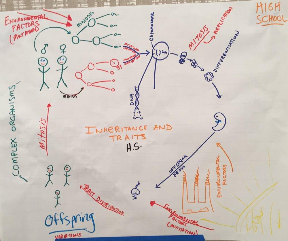 HS - Inheritance and Traists.JPG
