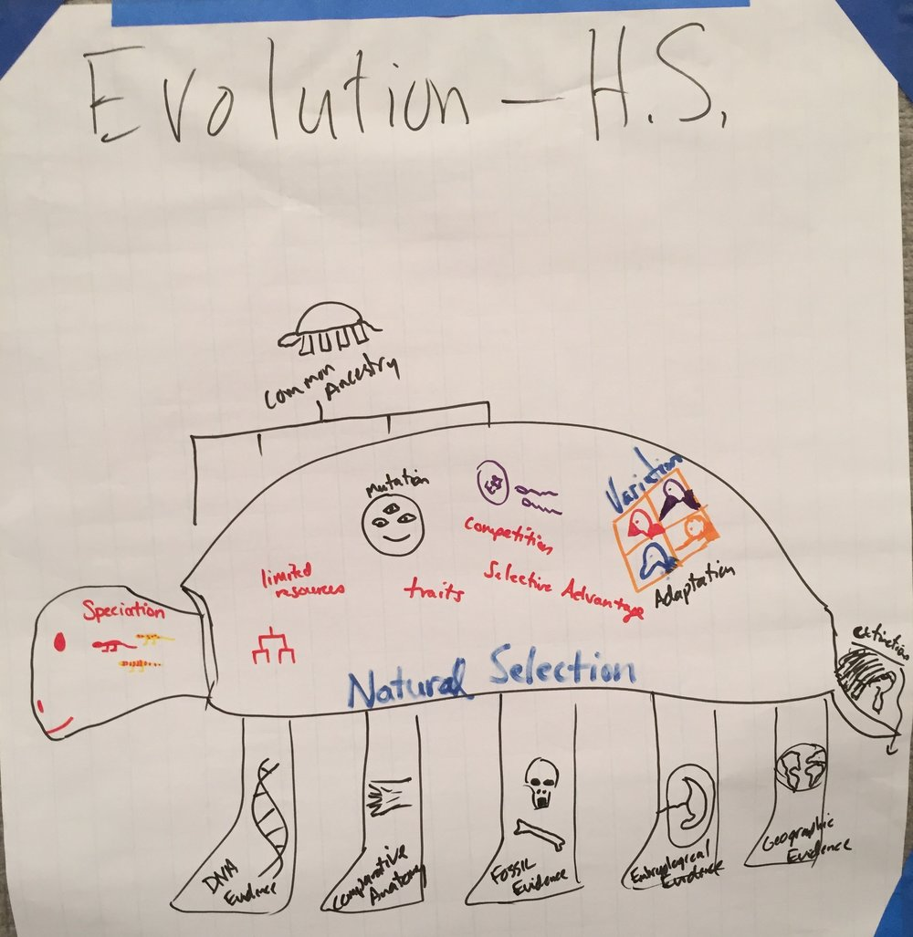 HS-Evolution and Natural Selection.JPG