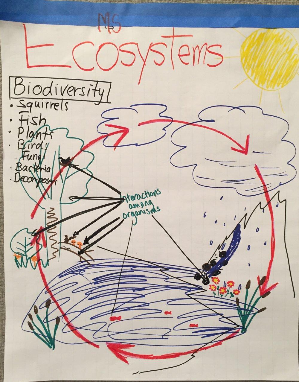 MS-Ecosystems.JPG