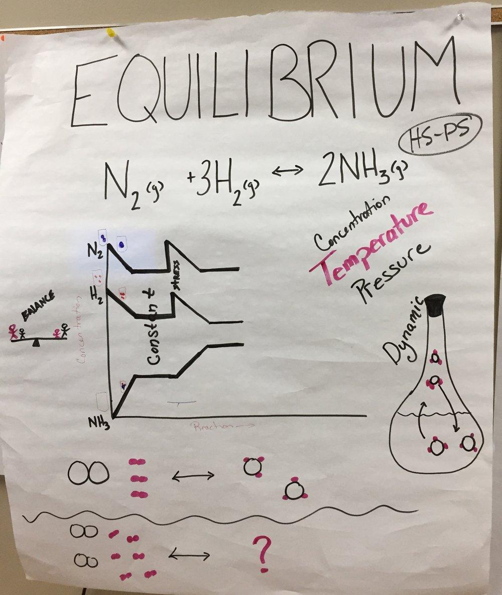 HS - Equilibrium.JPG