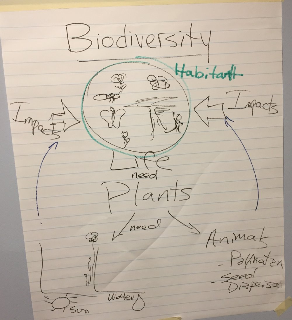 2 Biodiversity and Ecosystems.JPG