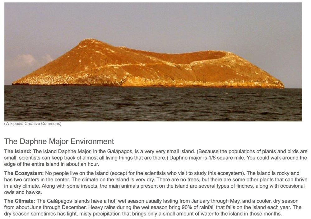 The_Galápagos_Finches__Island_Ecosystem.jpg