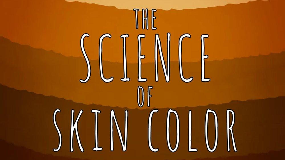skin color.jpg