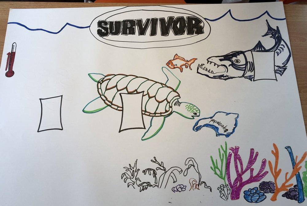 Grade 3 - Survivor.JPG
