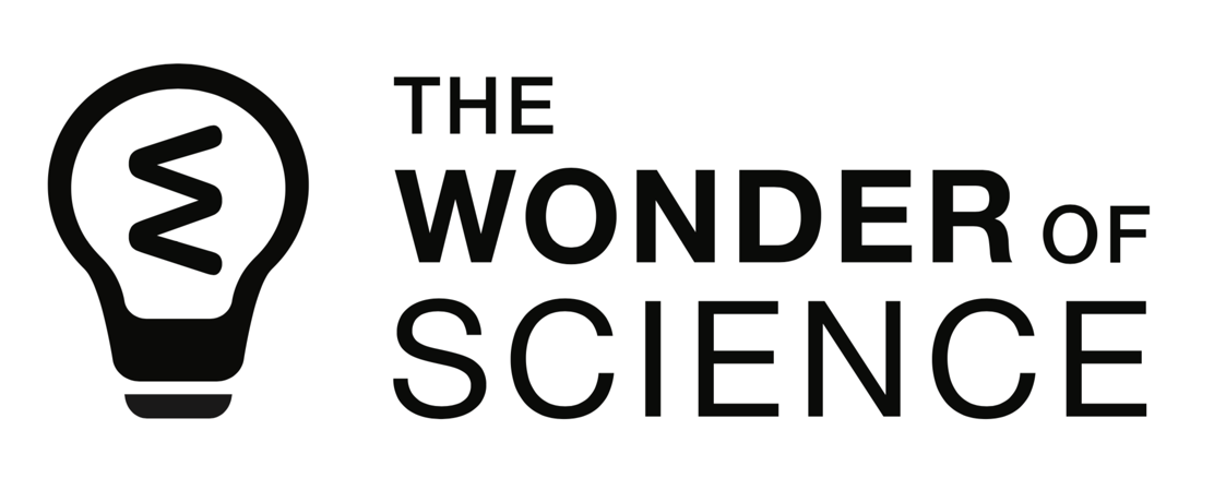 The Wonder of Science