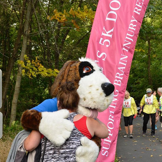 HCMC's Bernie the Rescue Dog cheering the runners @charlenesdogrun#firstannual  #twincitiesdogs #braininjuryawareness #charlenesdogrun