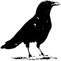 Crow.flip.jpg
