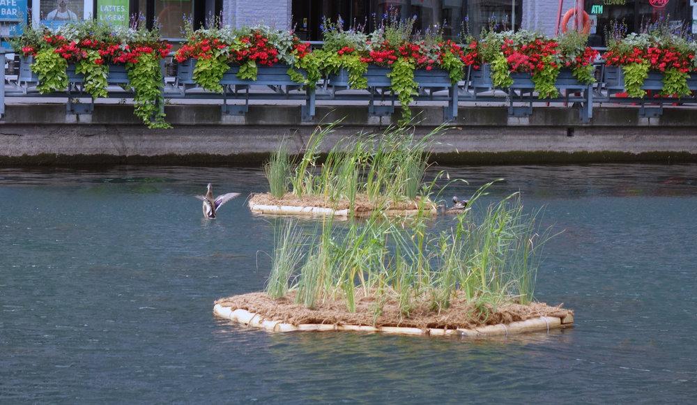 PSB Floating Gardens 01a.jpg