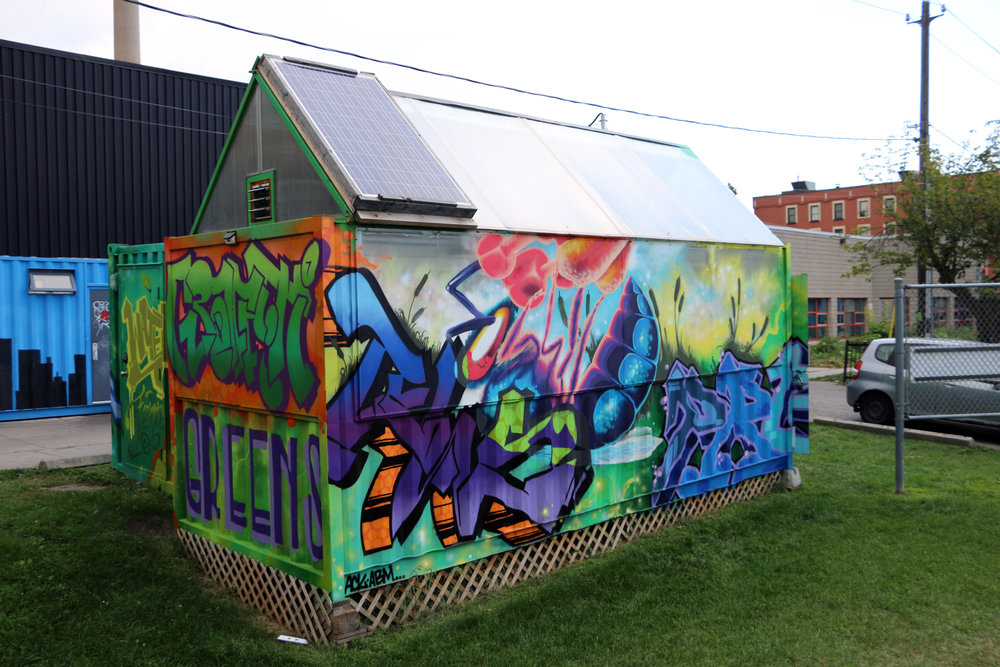 Scadding Graffiti Greens 03.jpg