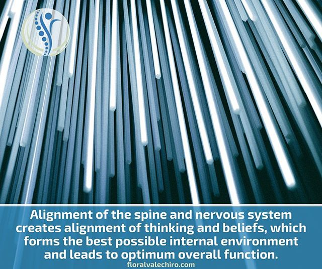 Alignment of the spine and nervous system creates alignment of thinking and beliefs, which forms the best possible internal environment and leads to optimum overall function.