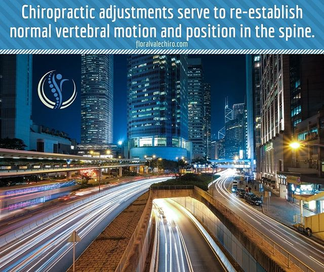 Chiropractic adjustments serve to re-establish normal vertebral motion and position in the spine.