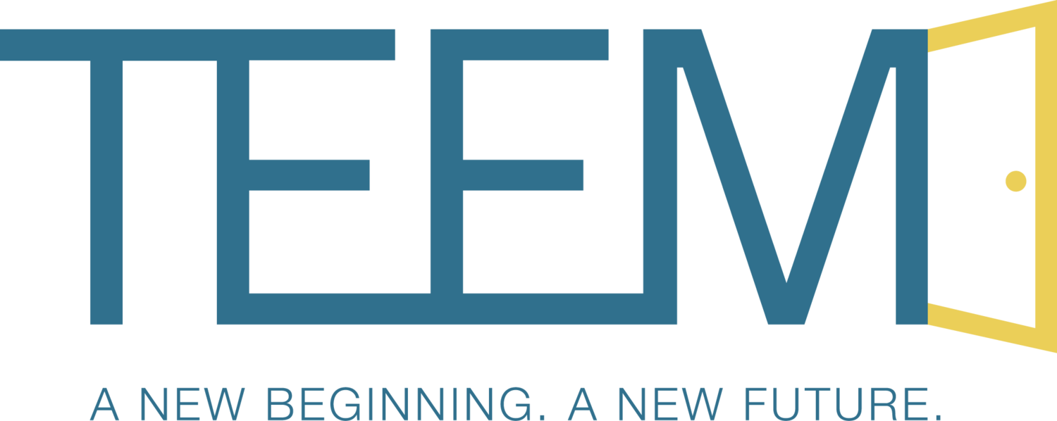 TEEM: The Education and Employment Ministry