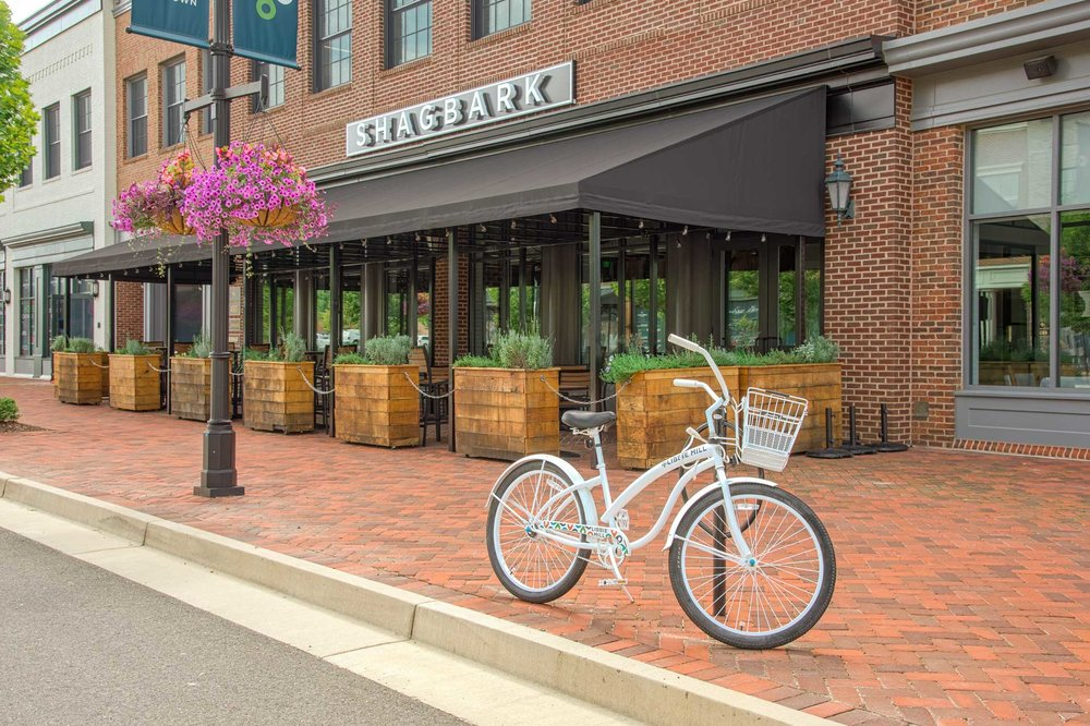 photo of bicycle infront of shagbark
