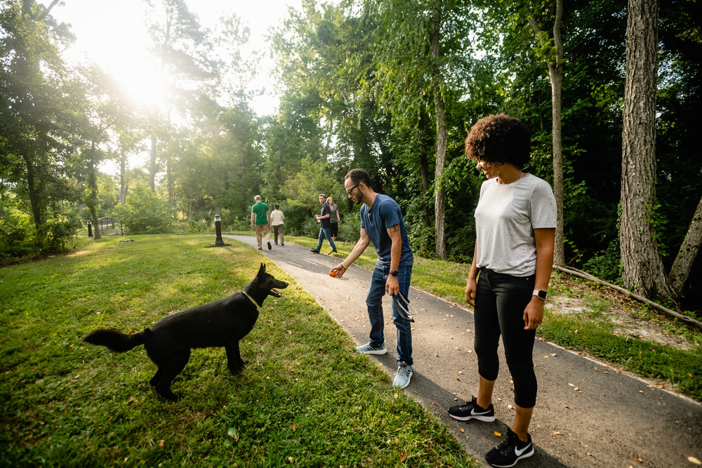 photo of people playing with a dog on jordan's branch trail
