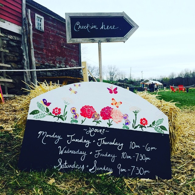 Come to the farm for the #tulip #festival #rhodeisland #supportlocal#savethebees#hours#wickedtulips#pickyourown#snakeden#rhodeislandfarmers#beautifulrhodeisland @mvincent10 @wickedtulips @ecotulips @yamesyoyce