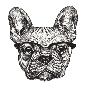 frenchie.png