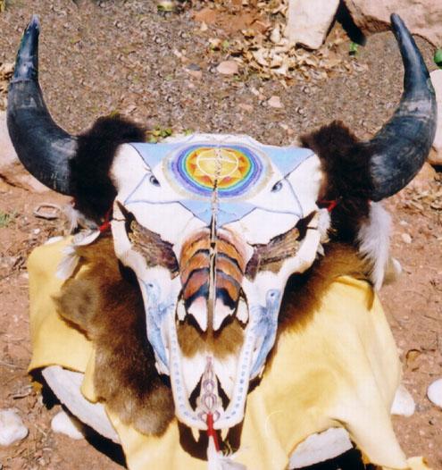Buffalo Skull Eye wings.jpg